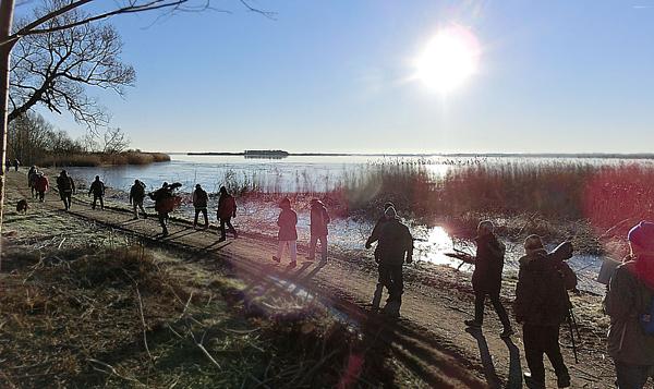 Hammarsjön600